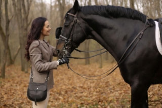 philinishop_black_horse_blackbag